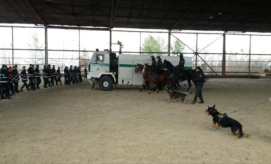 Cvičenie jazdnej polície v Košiciach, foto 1