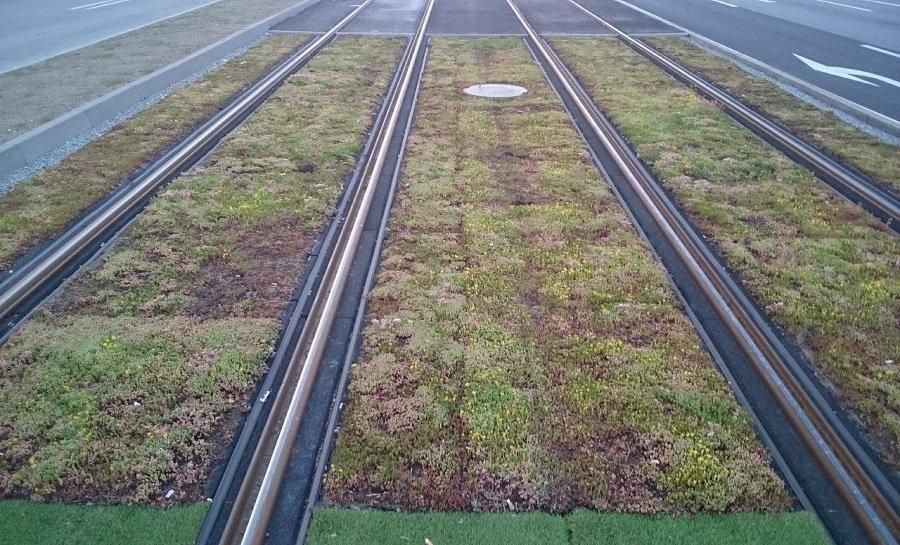 Košičan jazdil autom po novej tráve na električkovej trati, foto 1