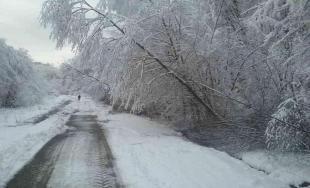 Sneženie na východnom Slovensku cez víkend
